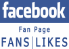 provide 1,000 Facebook likes to your fanpage plus 1000 followers
