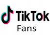 Give You 500 Plus Fans On Tiktok