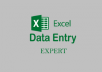 Do 2 hours of excel data entry