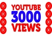 provide +3,000 Youtube Non Drop Views