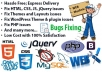 fix bugs and errors and redesign your website