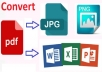 convert from pdf to MS Word, Excel, PowerPont and JPEG.