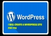 Create your wordpress website