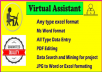 be your virtual assistant for data entry and data search