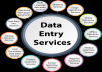 do all type of data entry job for you