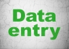 provide best services regarding Data Entry