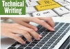 do data entry and professional and technical writing