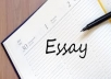 write a business, economics, finance, and management essays