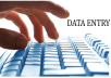 do all types of data entry perfectly