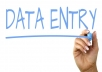 do all type of data entry and file conversion