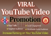 Fast Organic Youtube Video Promotion