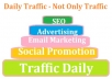 give unlimited traffic for your website and links