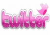 GIVE YOU 100+ HIGH QUALITY TWITTER FOLLOWERS