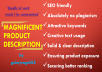 write SEO friendly eye catching product description