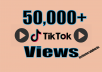 provide FAST 50,000+ TIKTOK Videos views