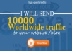 Provide 10,000 Web Traffic Visitors Worldwide