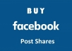 deliver 100 Facebook Post Photo Video Shares