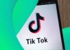 provide you 20k (20,000) TIKTOK Live Stream Views