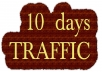 drive   Unlimited  AMAZON EBAY ETSY shopify visitors traffic for 10 days to your shop STORE