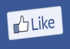 Add 1000+ Real Facebook Likes for