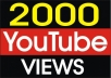 Provide you 2,000+YouTube Views