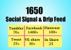 give 7 days drip feed service and social signals from top 6 social sites