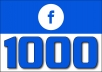 Add 500 Fan Page Likes (INSTANT) Super Fast