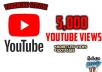 provide 5,000 High Retention Youtube Views