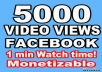 Give you 5000 High Quality Facebook Video Views