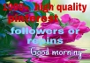 I am a all social media service provider.