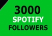 I will provide 3000+ Spotify Followers