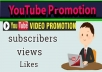 do YouTube Package Promotion All In One Instant package