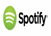 Add 6000+ Profile And Playlist Artist followers organically
