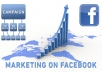 provide 500 facebook fanpage likes