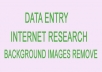 do data entry, internet research, remove  background of images, social media promotion etc..
