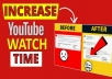 GIVE YOU 300+ YOUTUBE WATCH HOURS TIME FOR YOUR YOUTUBE CHANNEL WITHIN 48 HOURS