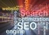 provide you SEO techniques that will improve your web site's Search Engine Ranking