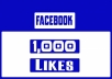 provide 1000 facebook page likes