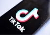 Grow Manually And Organically Your Tiktok Followers