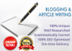 write articles and blog post for you
