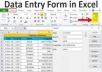 do professional entry data to excel for 24 hours