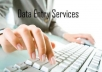 Do any type of data entry for you