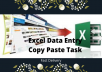 do excel data entry job perfectly