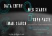Do Data Entry, Web search, Email collection