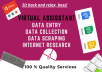 be your virtual assistant for data entry, data scraping, copypaste, web research