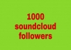 give 1000 soundcloud followers fast delivery