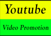 Promote your youtube videos and get likes subscribers within 15 days