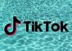 If you're looking Tik Tok professional for organic growth for your account. Then you landed on the right place . 