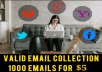 collect 1000 targeted email collection