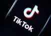 give 1000+ live people of TikTok Followers, Promotion of TikTok accounts